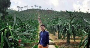 Bukit Naga Jolong